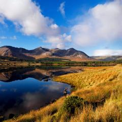 Cloverfox Connemara | Connemara | 3 reasons to stay with us - 1